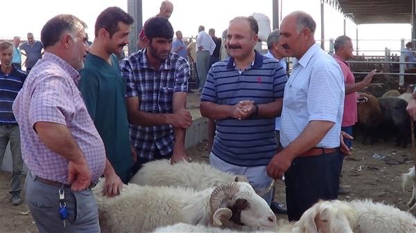 Tarım ve Orman Müdürlüğü ekipleri Hayvan Pazarını Denetledi