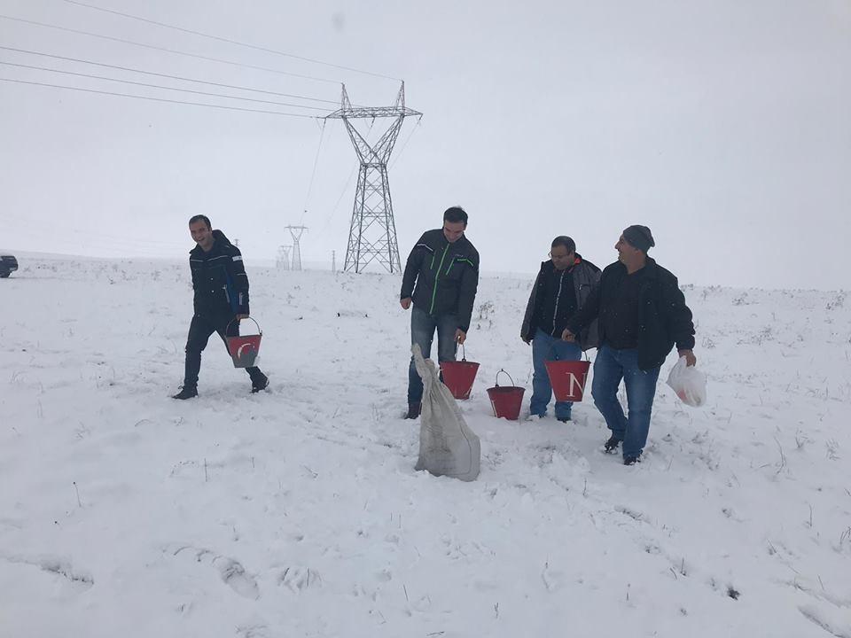 Kars'ta yaban hayvanlar için doğaya yem bırakıldı