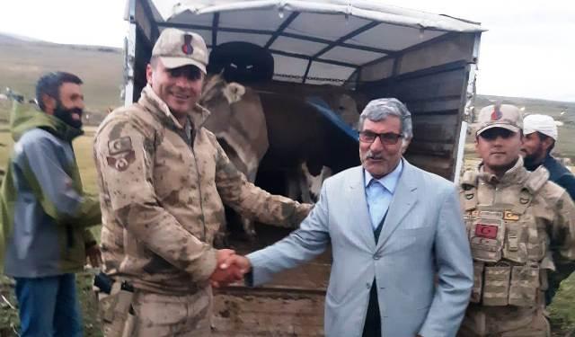 Jandarma, Susuz'da çalınan hayvanları Ardahan'da buldu