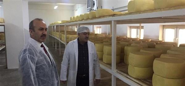 Kars'ta, gıda denetimi seferberliği