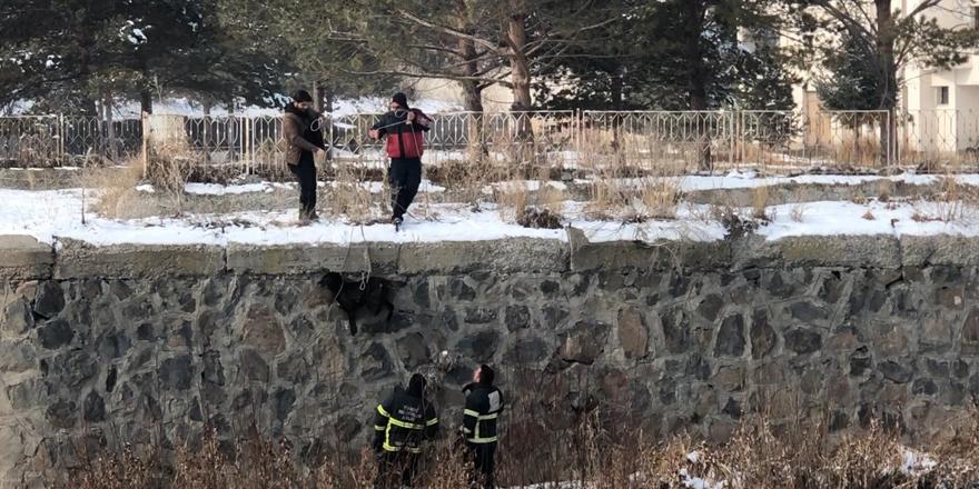 Kars Çayı'nda mahsur kalan köpek kurtarıldı