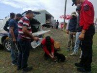 Jandarmadan yavru köpeğe şefkat eli