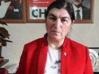 Demirci, 'Kadına Yönelik Şiddet Politiktir'