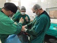 """""""Hayvan Hastanesinde 5 binden fazla hasta hayvan sağlığına kavuştu"""""""