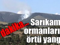 Son dakika... Sarıkamış ormanlarında örtü yangını!