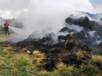 Kars'ta ot yangını