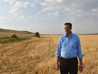 Kars'ın tarlalarından İstanbul'un sofralarına