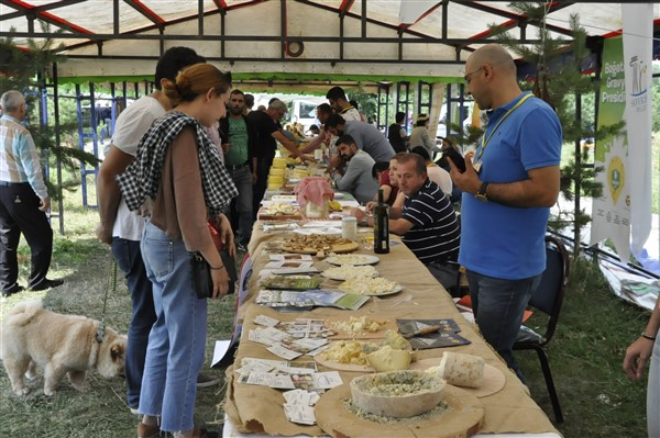 anadolu-peynirleri-cilavuz'da-gorucuye-cikti-(18).jpg