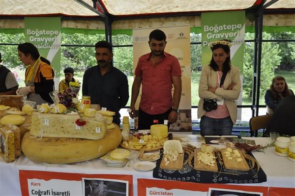 anadolu-peynirleri-cilavuz'da-gorucuye-cikti-(26).jpg