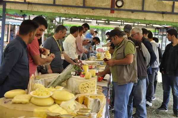 anadolu-peynirleri-cilavuz'da-gorucuye-cikti-(27).jpg