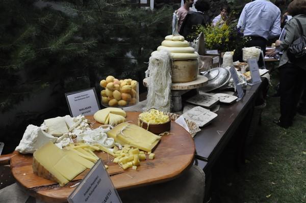 anadolu-peynirleri-kars'ta-bulusuyor-(17).jpg
