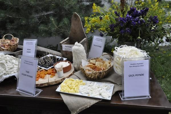 anadolu-peynirleri-kars'ta-bulusuyor-(22).jpg