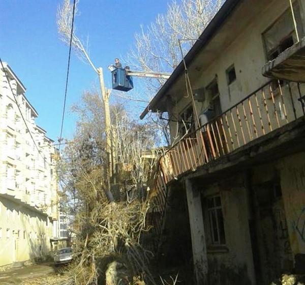 kars-belediyesi-asirlik-agaclari-buduyor-(4).jpg