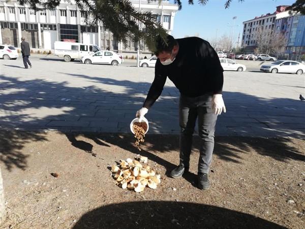 kars-belediyesi-sokak-hayvanlarini-ac-birakmiyor-(6).jpg