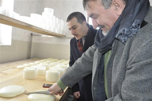 vali-oksuz-turkiyenin-ilk-ve-tek-peynir-muzesini-gezdi-(12).jpg